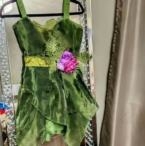 Fairy Halloween Costume - Perfect Condition
